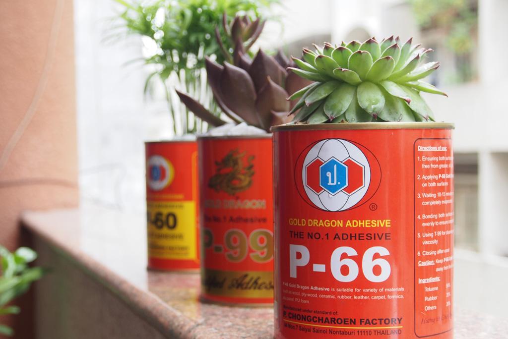keo-rong-vang-p65